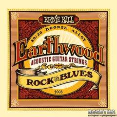Ernie Ball Earthwood Rock and Blues (P02008)