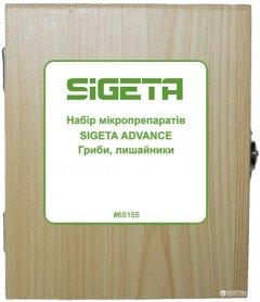Набор микропрепаратов Sigeta Advance Грибы лишайники 20 шт (65155)