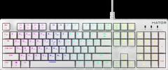 Клавиатура проводная HATOR Rockfall EVO Kailh Optical USB White (HTK-615)