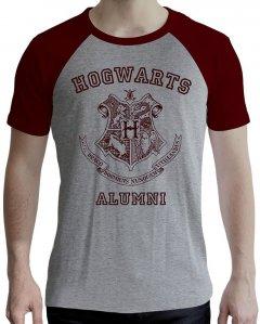 Футболка ABYstyle Harry Potter XXL Серая (ABYTEX502XXL)