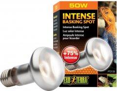 Рефлекторная лампа накаливания Exo Terra «Intense Basking Spot» для обогрева 50 Вт, E27 (015561221351)