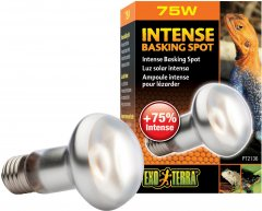 Рефлекторная лампа накаливания Exo Terra «Intense Basking Spot» для обогрева 75 Вт, E27 (015561221368)