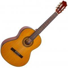 Гитара классическая Alfabeto SAPELE CS39G + bag (17-2-40-3)