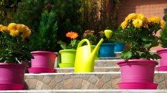 Лейка садовая Plastkon Spring 4.5 л Салатовая (8595096914802)