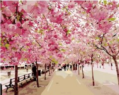 Картина по номерам Bookopt Цветение сакуры 50х40 см (bk_1047) (2252520907019)