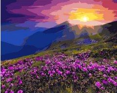 Картина по номерам Bookopt Солнце из-за гор 50х40 см (bk_1057) (2252520959018)