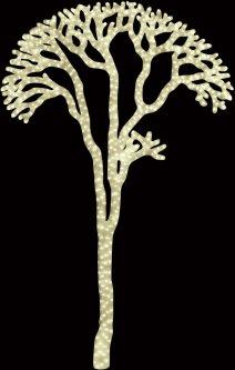 Новогодняя светодиодная декорация Scorpio Дерево 180x115 см 760 светодиодов Молочно-белый (560491) (4820005604913)