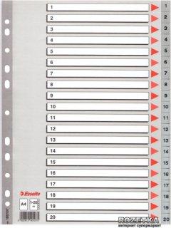 Пластиковые цифровые разделители Esselte А4 1-20 (100107)