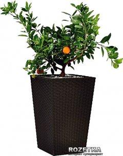 Горшок для цветов Keter Large Rattan Planter (7290103659295)