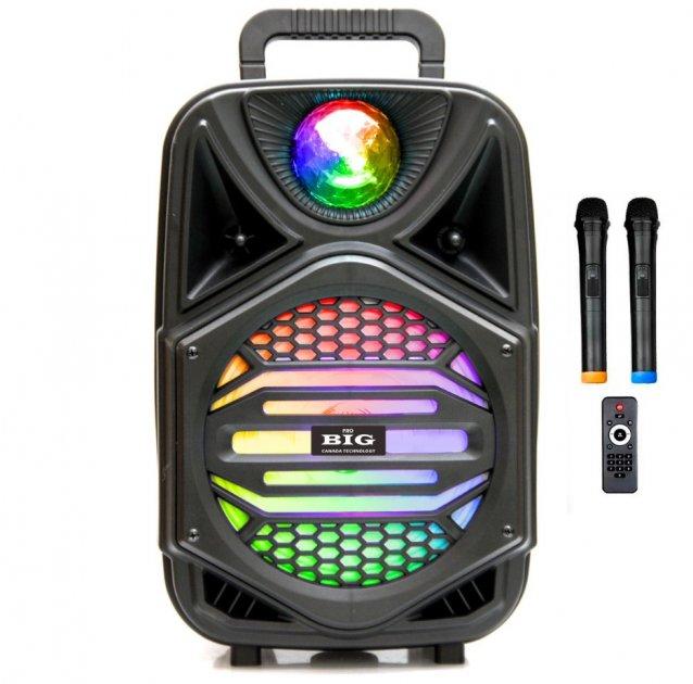 Автономная активная акустическая система BIG 110MAGIC BALL два радио микрофона, караоке - изображение 1