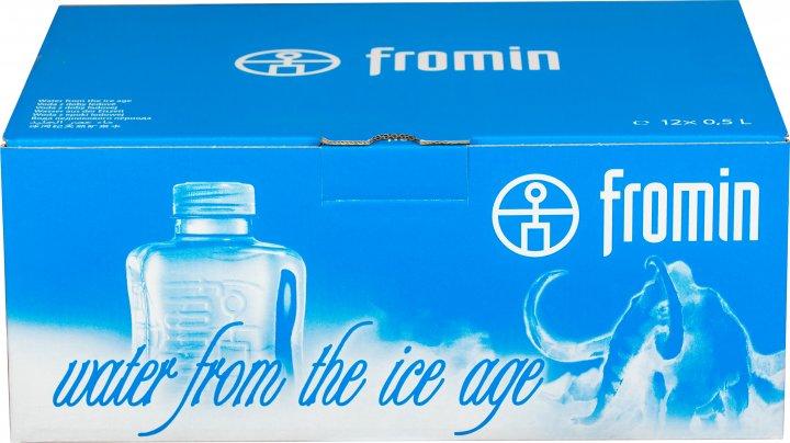 Упаковка воды ледникового периода питьевой негазированной Fromin Ledovka Water 0.5 л х 12 бутылок (8594161670209) - изображение 1