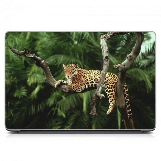 """Универсальная наклейка на ноутбук 15.6""""-13.3"""" IdeaClock 380х250 мм Leopard Матовая - изображение 1"""