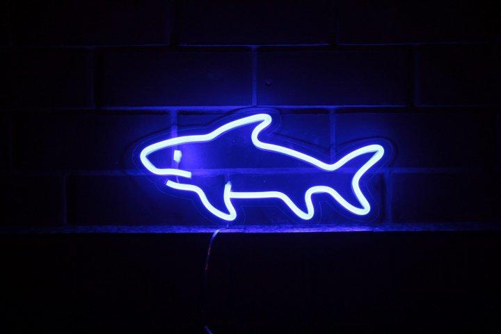 Неоновий світильник Neon Lightning «Акула» - зображення 1