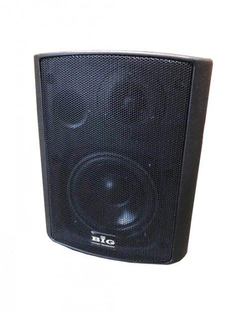 Настінна акустична система BIG MSB408-100V Black - зображення 1