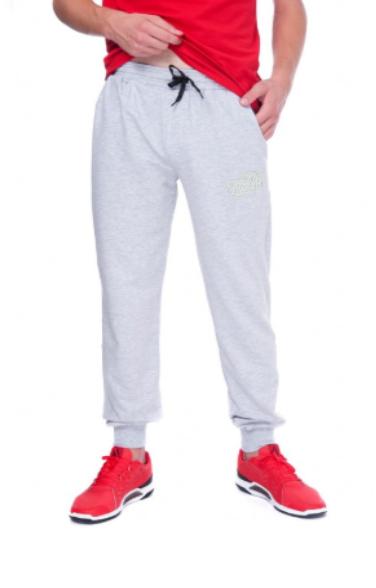 Спортивні штани URBAN SHSS4 UR (44) S Світло-сірий (AN-000053) - зображення 1
