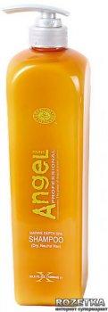 Шампунь Angel Professional для сухих и нормальных волос 1000 мл (3700814100039)