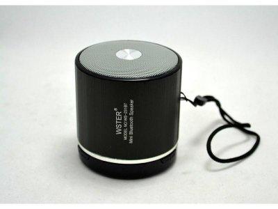 Портативна акустика WS-231 TG