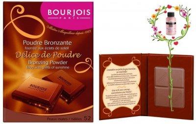 Пудра BOURJOIS Delice De Poudre Bronzing Powder 52 16,5 г (3052503715209)