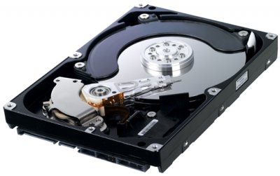 "Жорсткий диск Samsung SpinPoint F1 500ГБ 7200об/м 16МБ 3.5"" SATA II (HD502IJ) Refurbished"