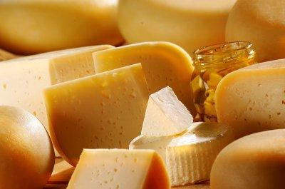Закваска Zakvaskin для сыра Российский 1 г за 1 комплект 2 фермента + 1 многокомпонентная закваска с защитной культурой