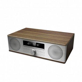 Акустична система Sony All-in-One Sound System Brown (XL-B710(BR))