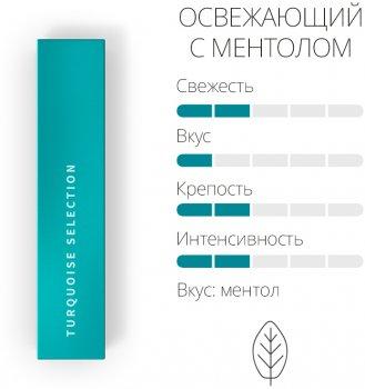 Блок стиків для нагрівання тютюну Heets Turquoise Label 10 пачок (7622100815341)
