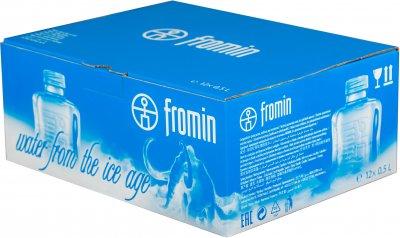 Упаковка воды ледникового периода питьевой негазированной Fromin Ledovka Water 0.5 л х 12 бутылок (8594161670209)