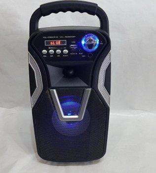 Акустична система AFG Ailiang LIGE-36110-DT Premium бездротова по Bluetooth 10 Вт з підтримкою AUX, USB, чорна, акустика, акустична система, музичний центр, Bluetooth ( блютус), для будинку, дачі, кафе, природи, акумуляторна