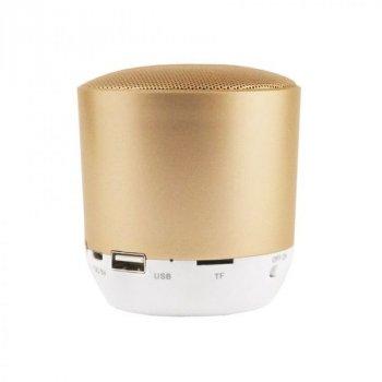 Акустична система Hopestar H9 (gold)