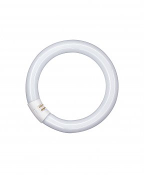 Люмінесцентна лампа OSRAM L22W/840 C G10q (діам. 216мм) кільцева (4008321581082)
