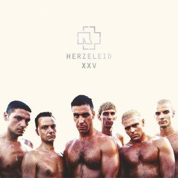 Виниловая пластинка Rammstein - Herzeleid XXV Anniversary Edition (2LP)
