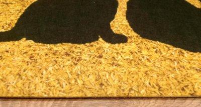 Придверний килимок IzziHome Peppina Kapi Uc Kedi 40x60 (2200000553584)