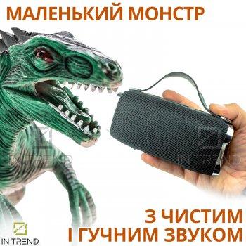 Портативна колонка Hopestar H36 акустична USB з функцією TWS і Power Bank + потужний блютуз гучномовець - вологозахисна IPX6 з гучним стереозвуком і FM-радіо - Музична портативна система Bluetooth, Чорний