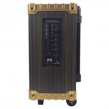 Активна акустична система LAV Q-801 Чорний з коричневим (3349-9766)
