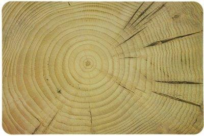 Сервірувальний килимок МД Tree 30х45 (PM01447)
