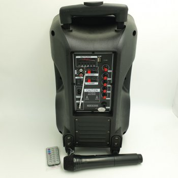 Акустична система комбік 2 радіо мікрофона бездротова акумуляторна колонка USB FM Su-Kam BT-100D Black