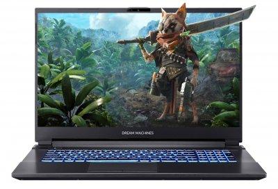 Ноутбук DREAM MACHINES RG2060-17 (RG2060-17UA58)