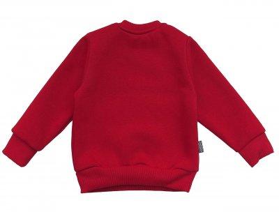 """Теплый свитшот """"Викинг"""" Maccaboy для мальчика Красный Маломерный 11932 Enot Star"""