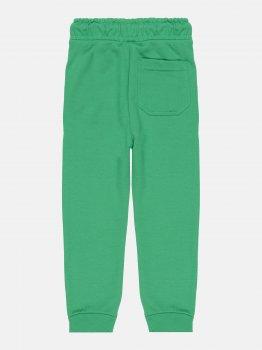 Спортивные штаны Minoti 5FJOG 5 Зеленые