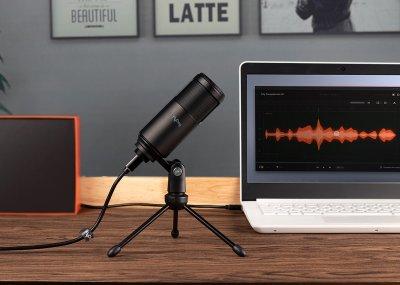 Студійний мікрофон FlyDay F0 (USB) зі штативом Black