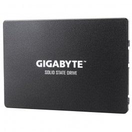 Gigabyte GP-GSTFS31100TNTD (GP-GSTFS31100TNTD)