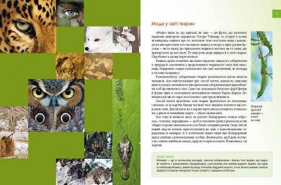 Тварини - майстри маскування - Гапченко А.В. (9789669359650)