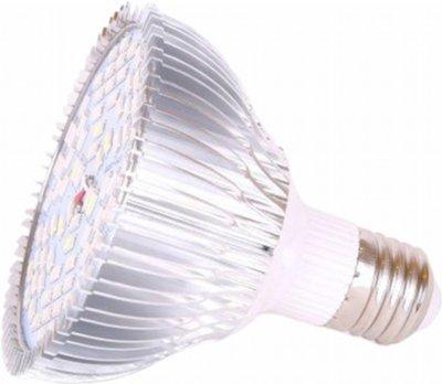Світлодіодна фітолампа VENOM 50W SMD 5730 220В (FL-P-010-50)