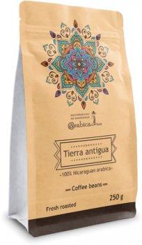 Кава в зернах UCC Tierra Antigua 250 г (4820230023367)