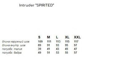 Спортивные штаны Intruder, Spirited черно-белые (RAZA)