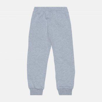 Спортивные штаны Robinzone Весна 2021 3102111 Меланжевые