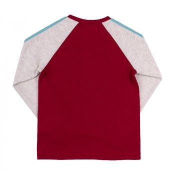 Реглан для мальчика BEMBI красный, серый (559313)