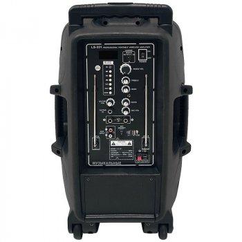 Акустическая система Soundking LS331