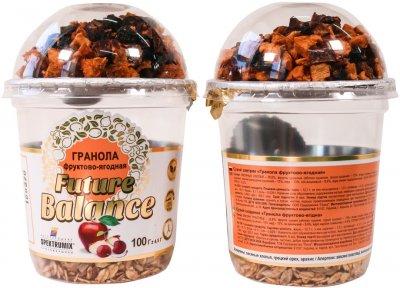 Упаковка гранолы фруктово-ягодной Spektrumix Future Balance 2 шт х 100 г (2000000004228)