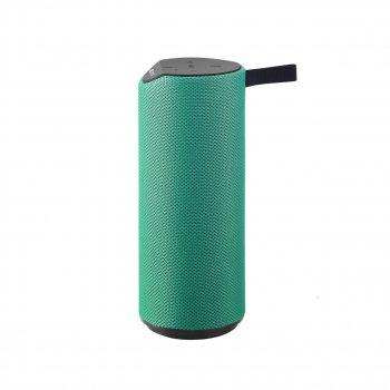 Bluetooth-колонка Canyon CNS-CBTSP5G Green